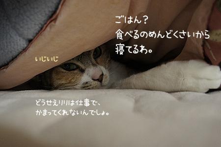 0127_02.jpg